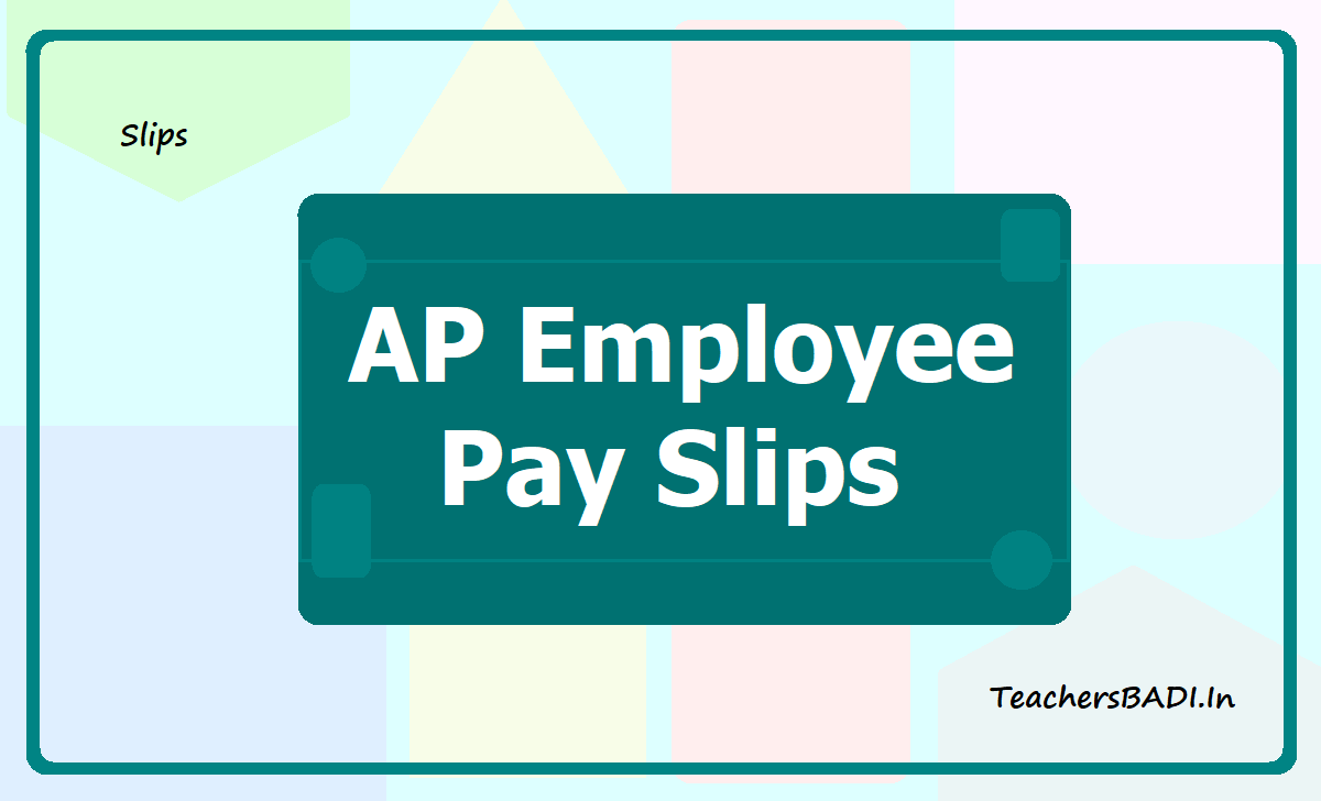 AP Employee Pay Slips 2020