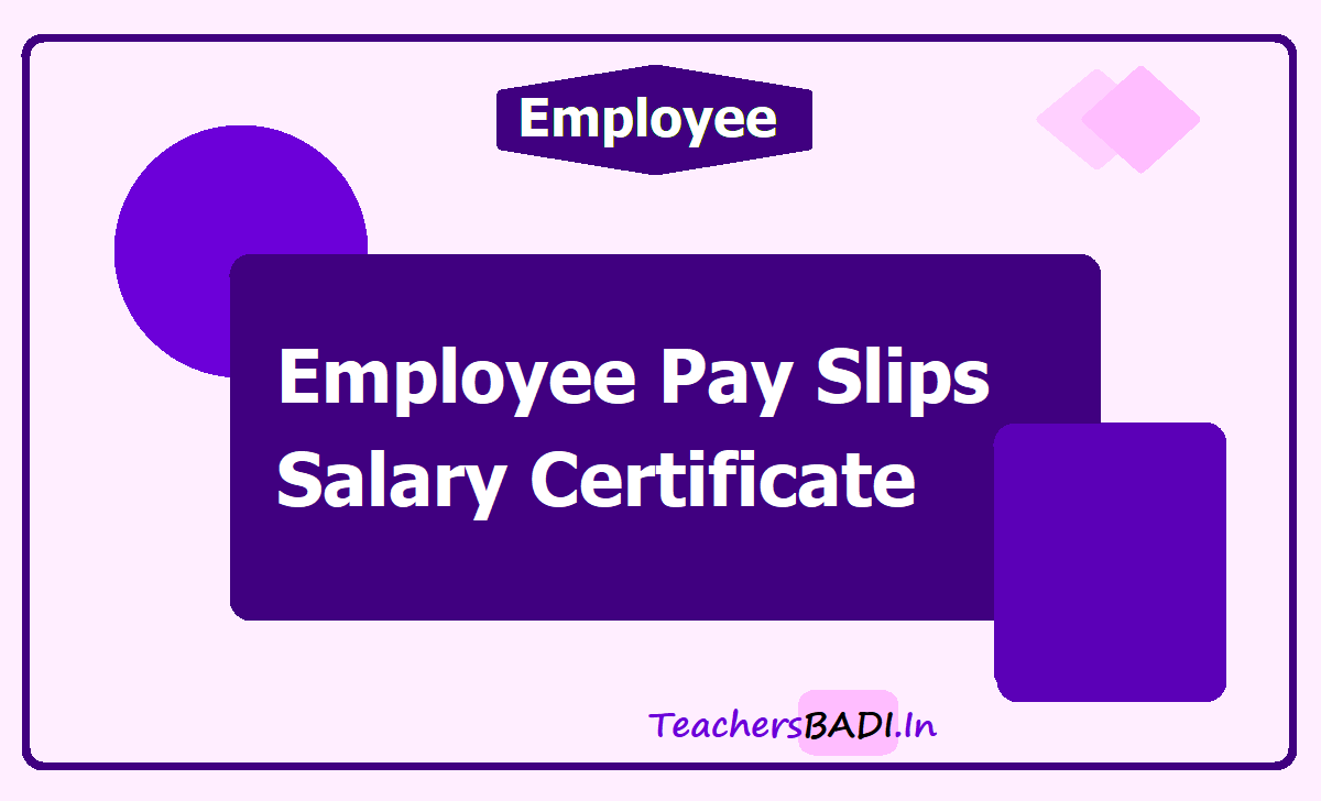 Employee Pay Slips /Salary Certificate