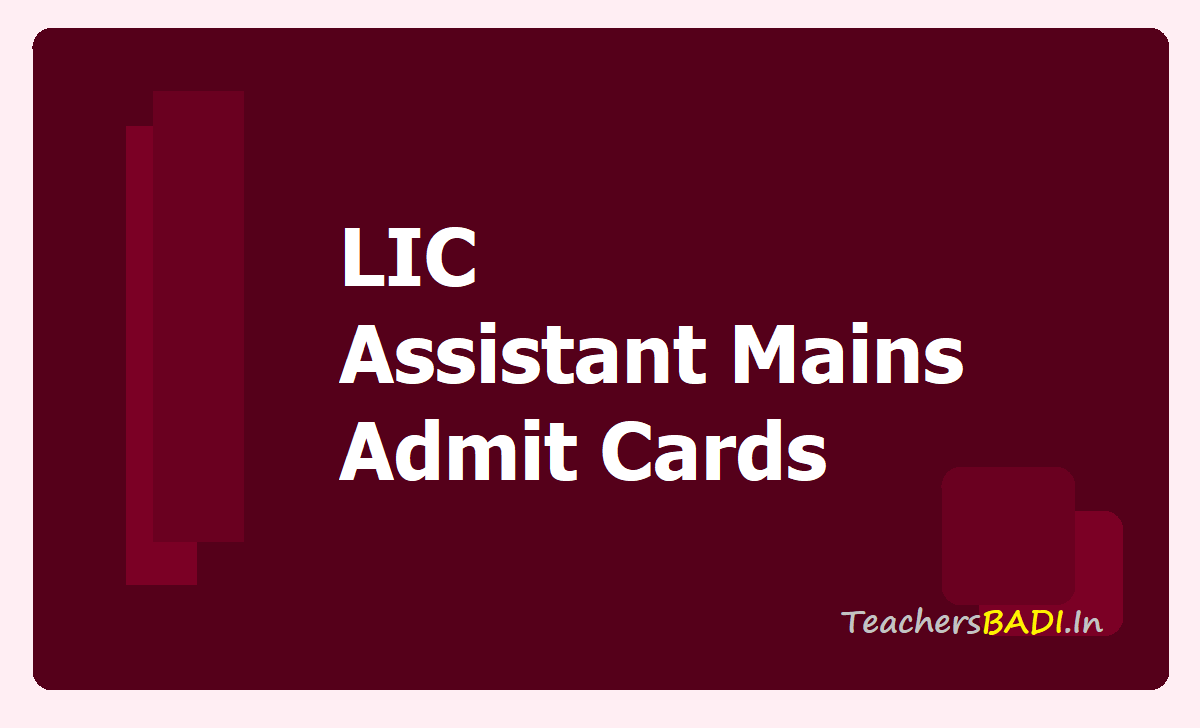 LIC Assistant Mains Admit Cards 2020