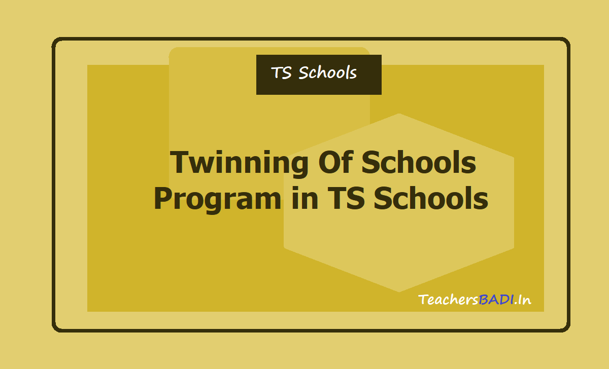 Twinning Of Schools Program