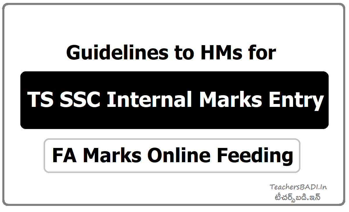 Guidelines to HMs for TS SSC Internal Marks Entry