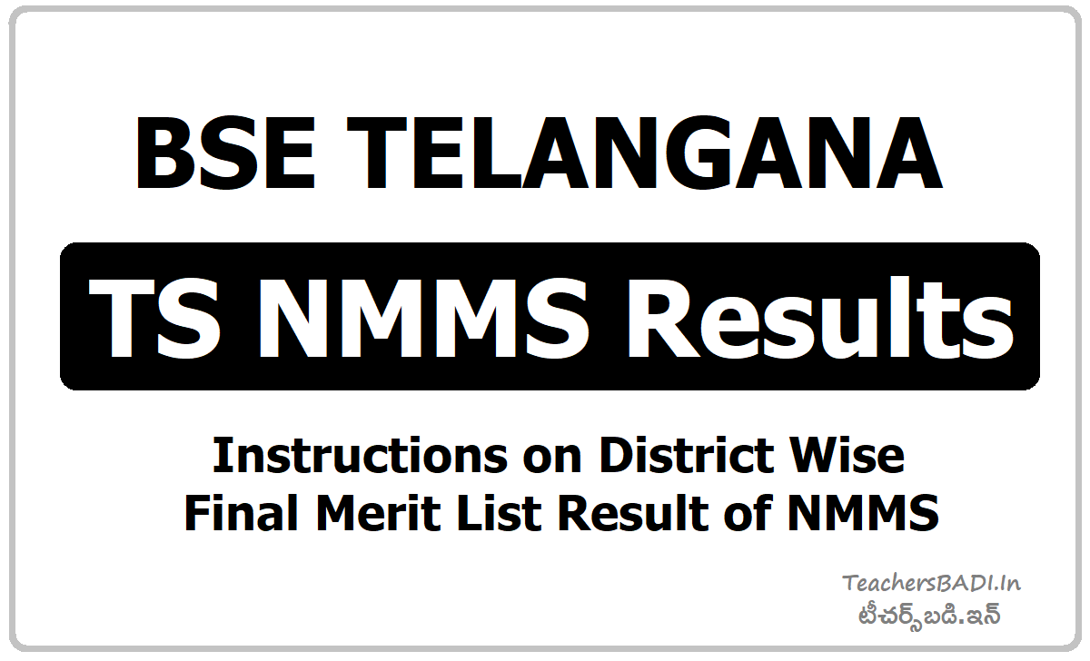 TS NMMS Results & Instructions on District wise final merit list of NMMS