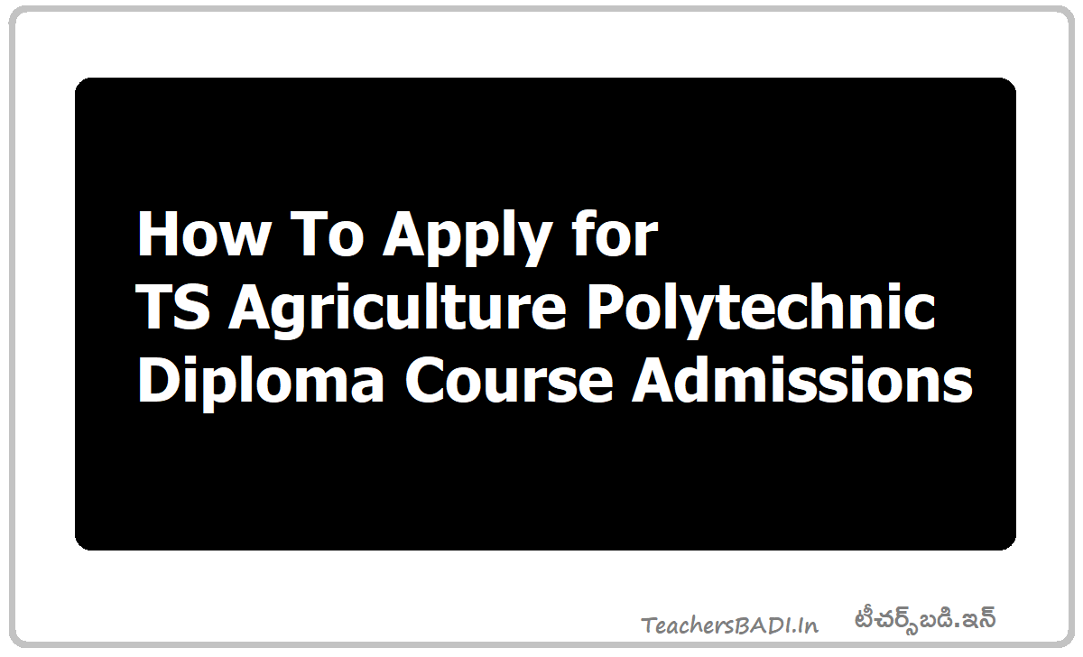 How To Apply for TS Agriculture Polytechnic Diploma Course Admissions