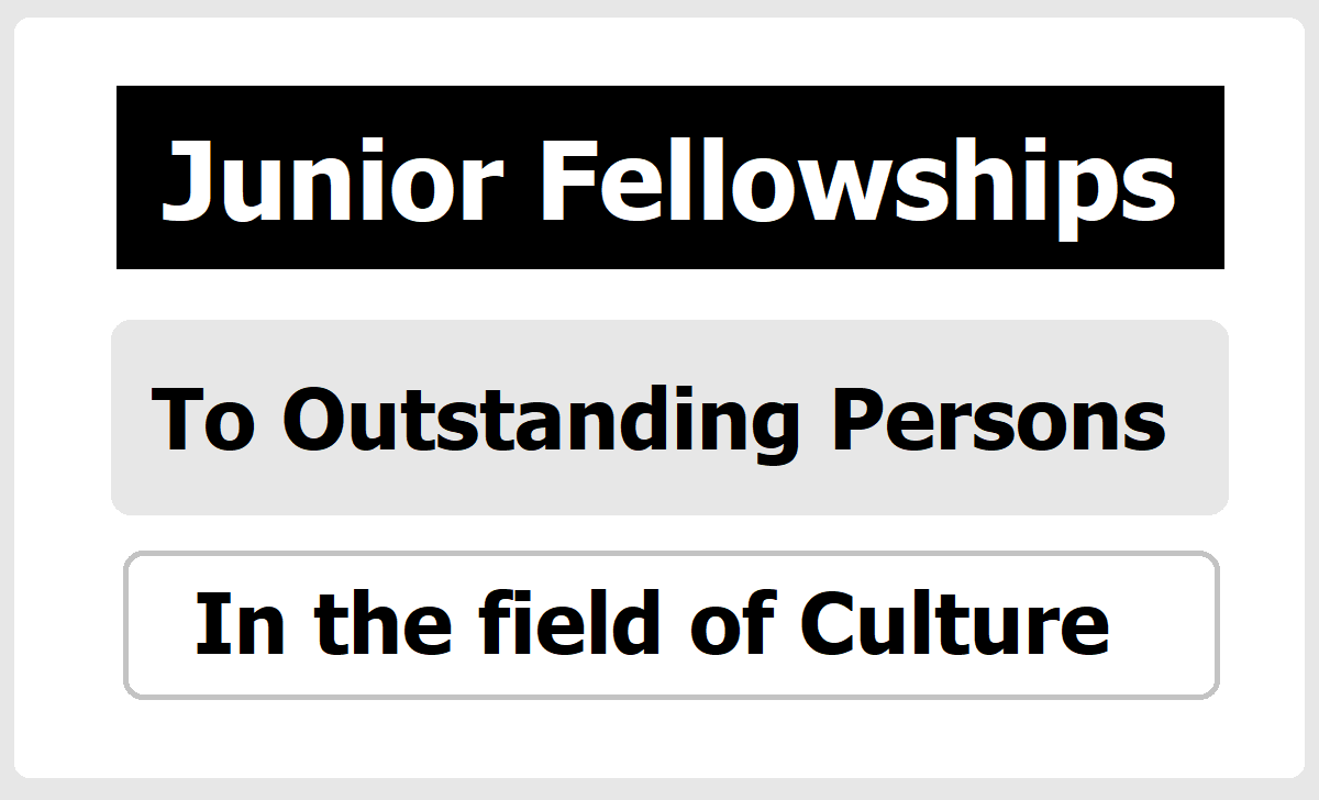 Junior Fellowships to Outstanding Persons In The Field Of Culture 2020