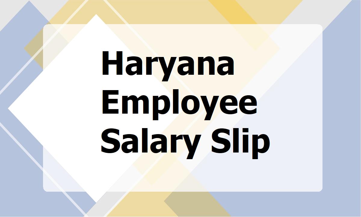 Haryana Employee Salary Slip
