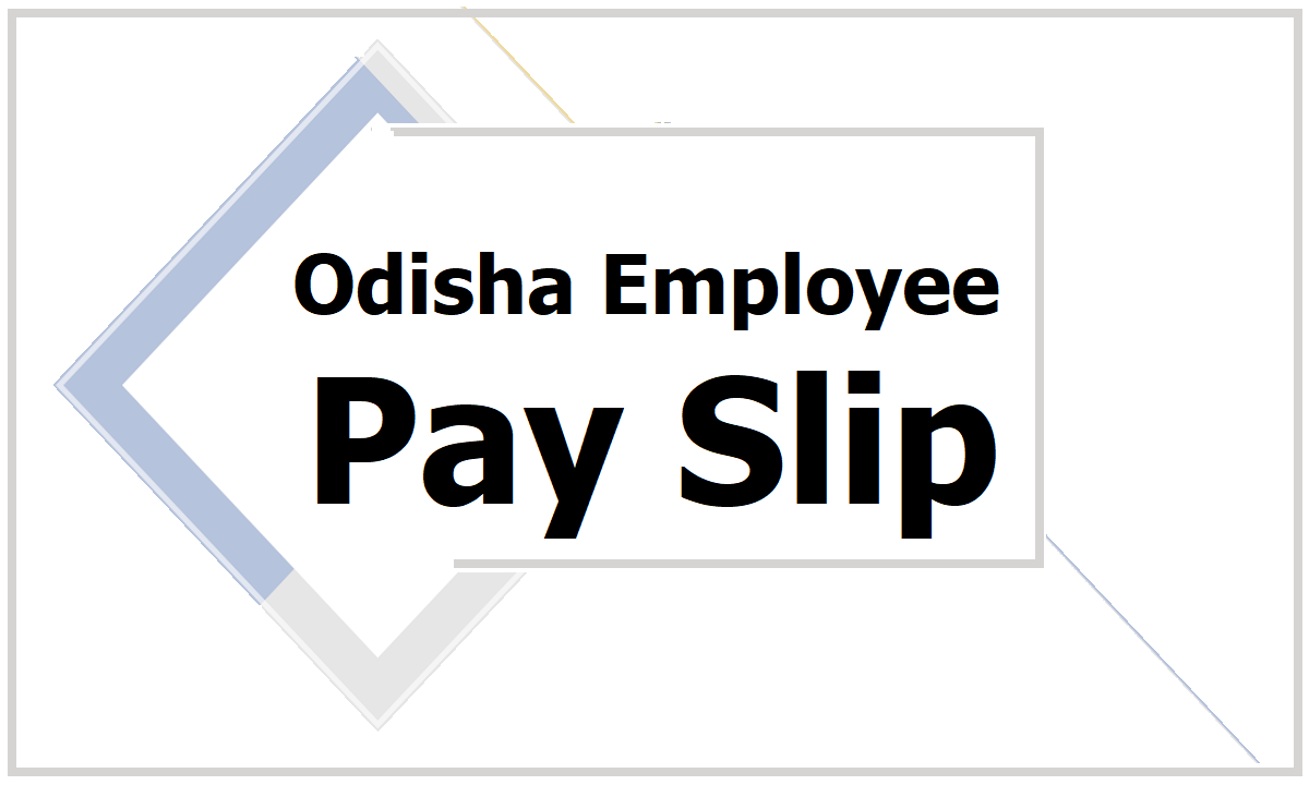 Odisha Employee Pay slip download HRMS Salary Slip generate website