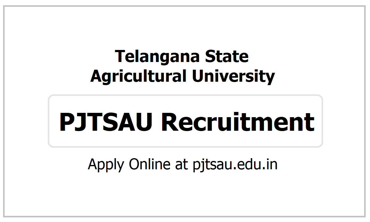 Telangana Agricultural University, PJTSAU Recruitment 2021, Apply for Non Teaching Posts