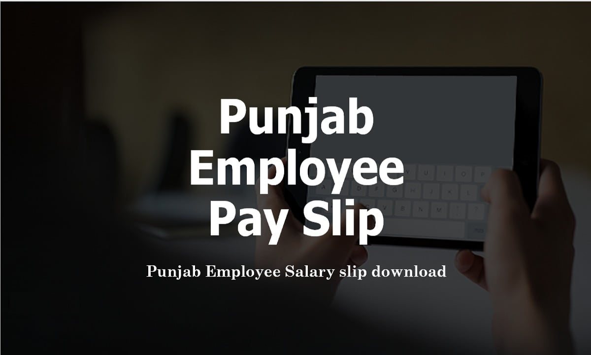 Punjab Employee Pay Slip 2021 download from iHRMS Salary Slip Website