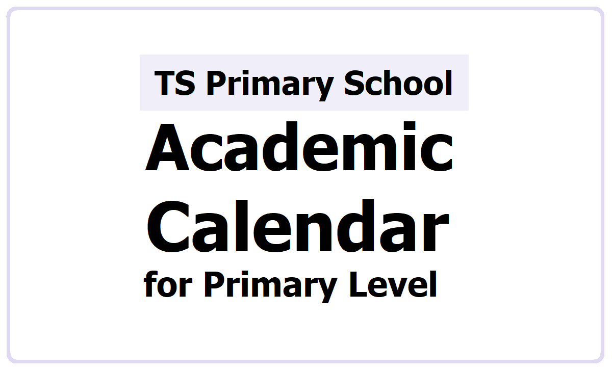 TS Primary School Alternative Academic Calendar 2021-2021